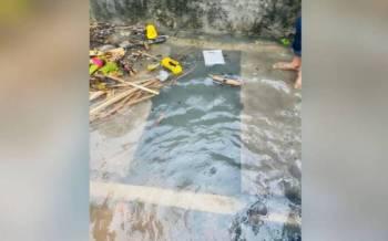 Mangsa dikatakan dibawa arus setelah dipercayai terjatuh dalam longkang berhampiran Jalan Bunga Tanjung 4, Kampung Baru Hicom di sini petang Ahad.